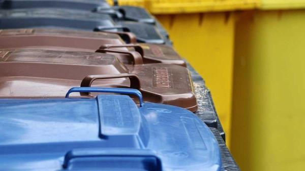 Bild: Mülltonnen sollten schon ab Vorabend an die Straße gestellt werden