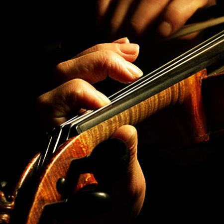 Geige Bild